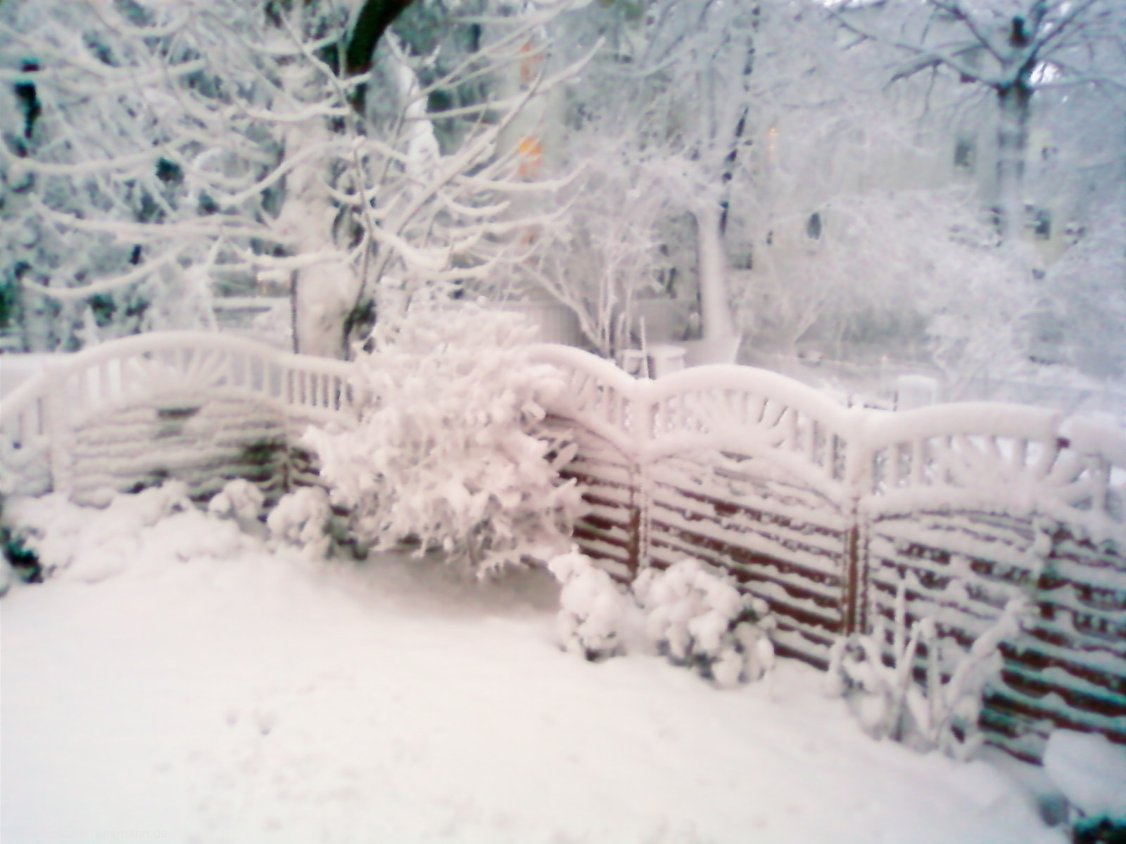 Schnee Dezember 2008