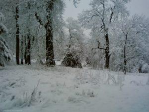 ... und bewarfen ihn mit Schnee – nicht aus Spaß, sondern mit Wucht, dass es schmerzte und er blaue Flecken an den Schienbeinen davon trug.