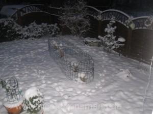 Schnee 2009