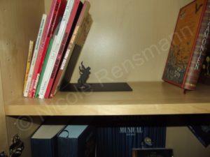 "Bei den dünnen Büchern stützt ""Falling Bookend"" so wie sie soll."