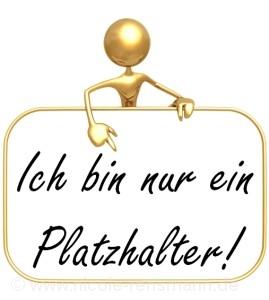 Online-Veröffentlichungen Elfchen / Storys