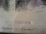 """Hier der Ausschnitt mit der Signatur von Ferdinand Hermann Moritz. Die im Remscheider """"Haus Cleff"""" hängende Zeichnung dürfte eine Kopie sein."""