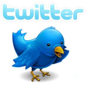 @Wir Schreiben – der 1. Twitter-Mitmach-Roman