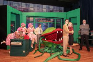 Der Laden brummt, Seymour und Audrey finden zusammen. Doch die Pflanze verlangt nach mehr.