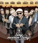© Cover: Sing meinen Song (Vox) - Allstars