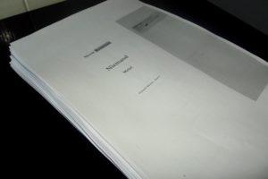 390 Normseiten, doppelseitig bedruckt - Niemand - Mehr!