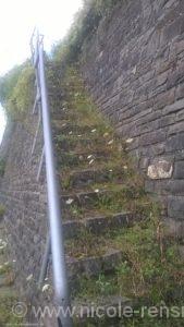 Eine verwunschene Treppe, die zu den Weinbergen hinaufführte.