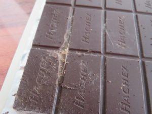 Wenn die Schokolade schon einen Besucher hat