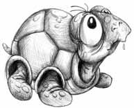Nicole Rensmann - Rasputin, die alte SchildkröteKurzgeschichte